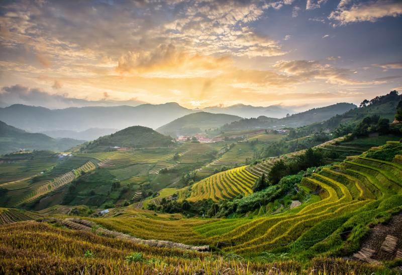 Bali Yangsheng 2022